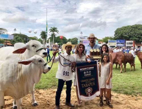 Tabapuã da Gê 05 conquista  o Grande Campeonato em Uberaba
